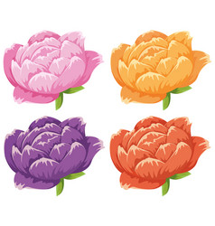 four different colors of flowers vector image vector image