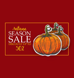 horizontal banner for autumn sale vector image
