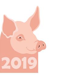 pig 2019 new year flat vector image