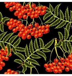 red rowan berries seamless pattern template vector image