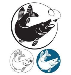 fish pike vector image