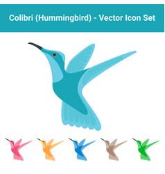 colibri hummingbird - set of different colored vector image