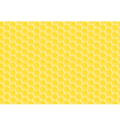 honey combs pattern vector image