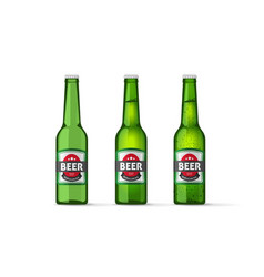 Beer bottles objects isolated realistic vector