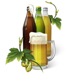 beer mug hops three beer bottles vector image