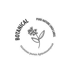 botanical logo outline drawing in set vector image