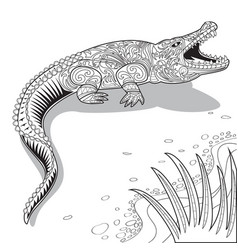 Crocodile line art vector