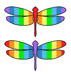 Dragonfly icon rainbow color stripes the vector