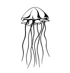 jellyfish ink hand drawn vector image