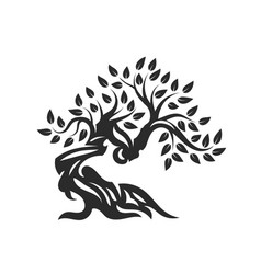 Organic natural and healthy olive tree silhouette vector