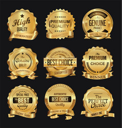 retro golden badge collection vector image