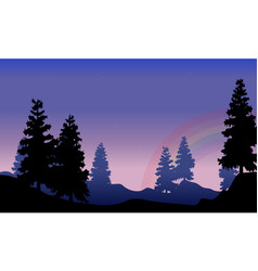 Silhouette of spruce with rainbow beauty scenery vector