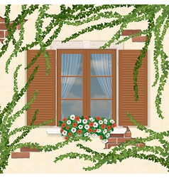 Wooden window overgrown ivy vector image
