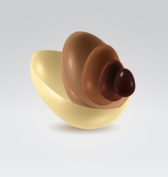 Chocolate shells vector image vector image