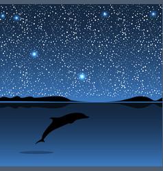 dolphin sea animal night landscape vector image