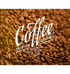 Roasted coffee beans vector image vector image