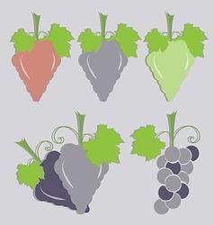 set of grape icon vector image vector image