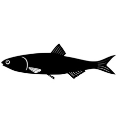 Silhouette of anchovy vector image vector image