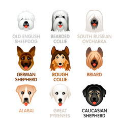 cute dog icons - set iv vector image