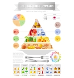 Food pyramid infographics vector
