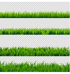 Grass border set vector