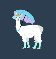 Llama under umbrella vector