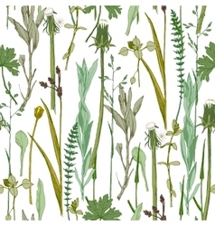 Seamless herbal pattern vector