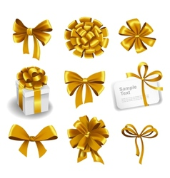 Set of gold gift bows with ribbons vector image