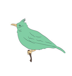 bird sitting on a branch vector image