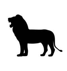 black silhouette growling lion vector image