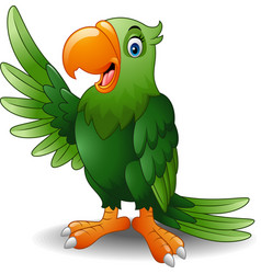 cartoon green parrot waving vector image