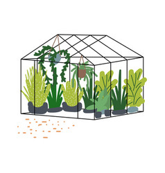 greenhouse with plants flowers vector image