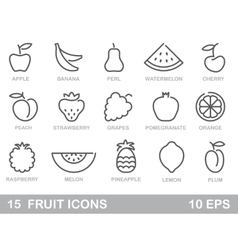 Stylized outlines of fruit icons vector