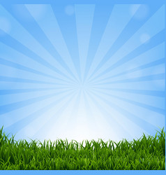 grass border with sunburst vector image vector image