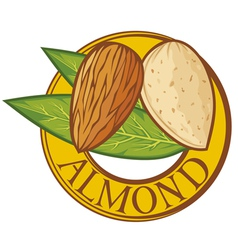 almond with leaves label vector image vector image