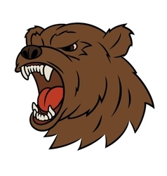 Angry bear head 2 vector image