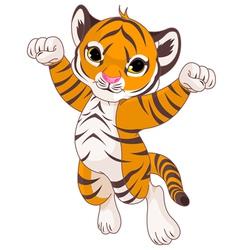 Cute tiger vector image vector image