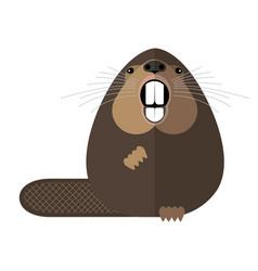 beaver vector image