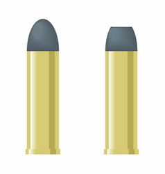 bullets colorful vector image