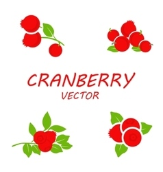 Flat cranberry icons set vector