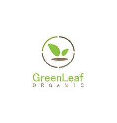 Green leaf organic business logo vector