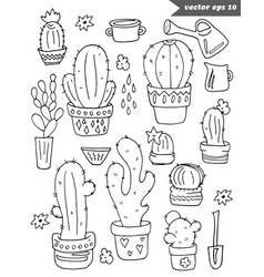 hand drawn black and white catus set vector image