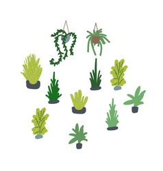 houseplants set succulents vector image