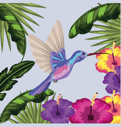 Hummingbird with flower and leaves plants vector