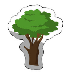 Isolated tree plant design vector