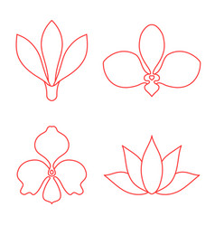 set of flower line art on white background vector image