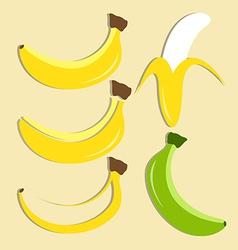 set of banana icon vector image