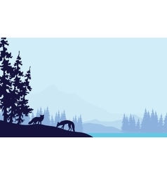 Blue backgrounds fox silhouettes vector image