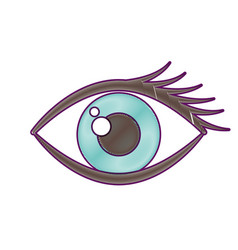 cartoon eye look eyebrow visual icon vector image