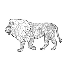 Lion coloring book for adults vector image